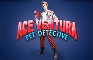 Игровой автомат Ace Ventura