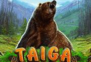 Taiga играть онлайн